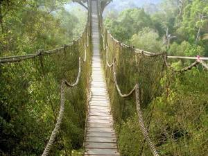 Resize of jembatan gantung kalimantan