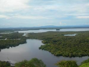 Resize of danau sentarum