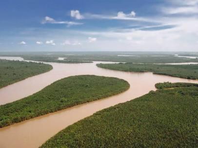 delta sungai mahakam kalimantan