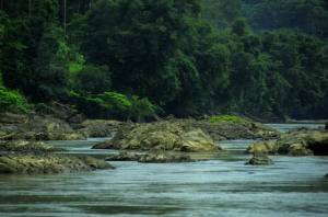 Resize of River_Stone_C